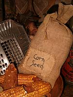 corn seed patched sack