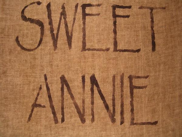 sweet annie towel