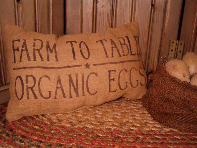 organic eggs pillow