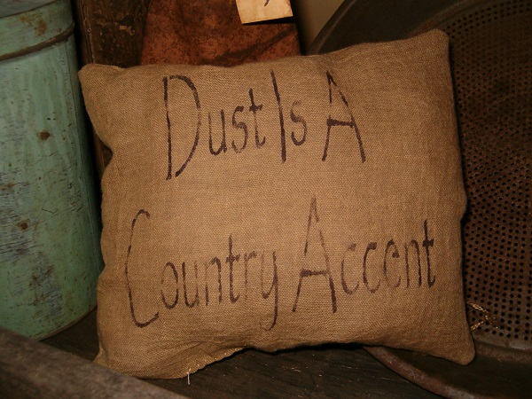 dust is a country accent pillow