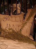 sweet annie pillow set
