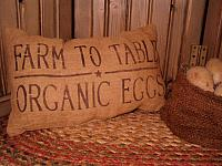 organic eggs pillow